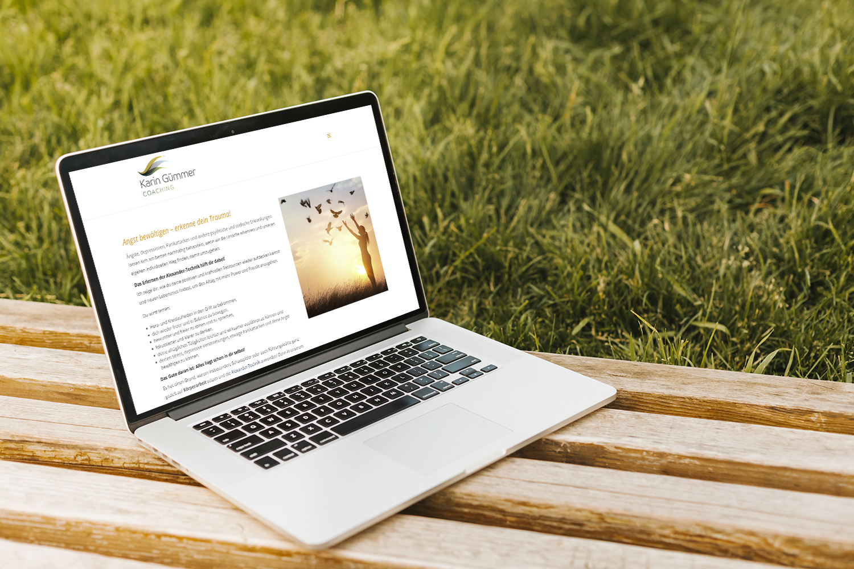 Foto Laptop auf Wiese Karin Gümmer Coaching